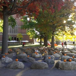 The plaza outside of the Innovation Lounge, a wonderful gathering spot on a beautiful fall day